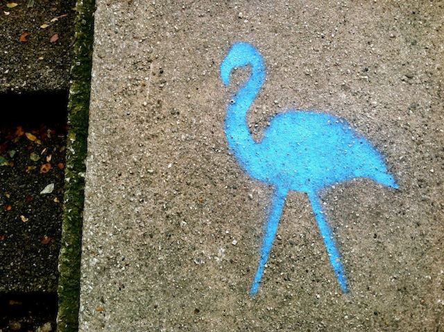 Because everyone needs a Blue Flamingo Allison Johnson, 2013